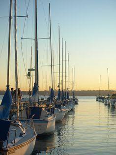 Lake Union Marina, Seattle, WA