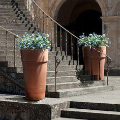 Klunia fioriera doppia da balcone. È provvista di agganci regolabili ...