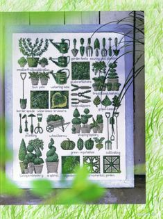 Cross Stitch Samplers, Needlepoint Patterns, Do Love, Cross Stitch Flowers, Flora, Crafty, Knitting, Green, Fun