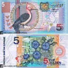 Billete - Surinam 2000- 5 Gulden