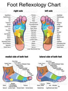 12 CE Hour Reflexology: Foot, Hand & Ear 2 DAY CLASS $185 #sleepapneacauses