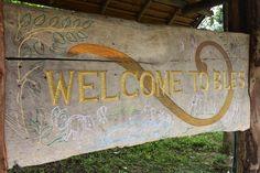 elephant sanctuary thailand - Google zoeken