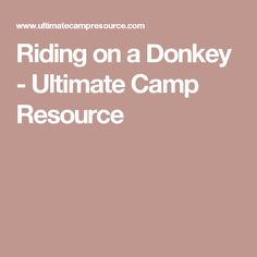 Riding on a Donkey - Ultimate Camp Resource