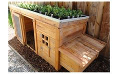 If a coop would occupy too much green space in your yard, why not build one with an integrated planter? The rooftop soil bed here is perfect for an herb garden, while the roomy interior would accommodate as many as four birds.