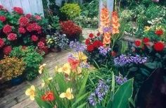 Beautiful Flower Garden Bulbs in Containers Ideas by jana