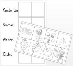 Thing 1, Science, Montessori, Preschool, Bullet Journal, Classroom, Education, Crafts, Sunflowers