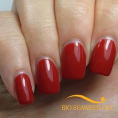 Image of UNITY All-In-One Colour Gel Polish - 127 Hollywood Gel Color, Colour, Red Dragon, Shellac, Gel Nail Polish, Red Nails, Seaweed, Pomegranate, You Nailed It