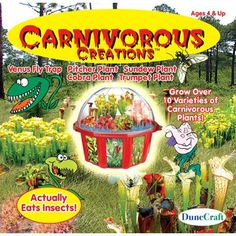 carnivorous creations Case of 6
