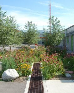 Good Denver CO The TAXI Development uses rain gardens to filter water from their parking