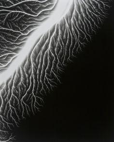 Hiroshi Sugimoto: Li