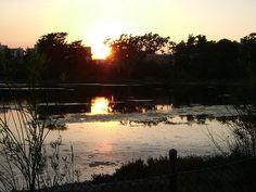 Sunset at UCSB #Sunset #UCSB #SantaBarbara #California #USA