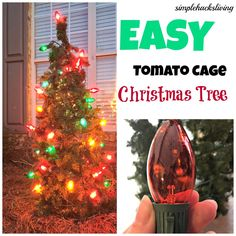 Tomato cages do double duty, first as steady supports for your summertime fruits, and in the off-season as Christmas trees. Round up some garland, outdoor lights, cable ties and landscaping pins and follow the easy instructions  at Simple Hacks Living. || @simplehack