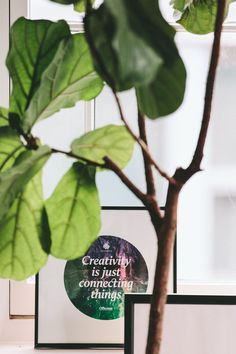 10 WAYS FENG SHUI CAN HELP YOU CHANGE YOUR LIFE...creativity is just connecting things