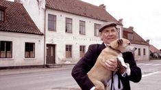 Bilder ur livet på Solgatan 16, underhållning för hela familjen. N P Möller är en före detta sjöman och änkling efter sin saknade maka Signe. Men hunden Calle och hans sysslor som fastighetsskötare på Solgatan 16 håller modet och humöret uppe. Det är ordning och reda på den lilla innegården som ligger ett stenkast från Möllevångstorget i Malmö men i bland dyker personer som Skogan, Danskdödaren, Alp-Olle och frisör Jonasson upp och skapar en röra som Möller mer eller mindre frivilligt dras…