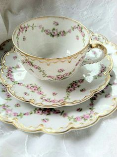 Pink flora vines tea cop and saucer with dessert plate.