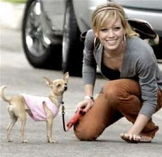 celebrities and their pets - Bing Images