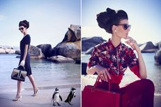 More of Boulders Beach from TATLER's editorial! Seriously though, can we address the ungovernable cuteness of those penguins? Boulder Beach, Most Beautiful Cities, Gaia, Bouldering, Editorial Fashion, Fashion Photography, City, Cape Town, Penguins