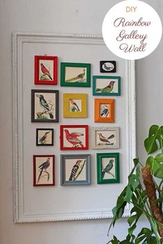 It's easy to make a stunning rainbow gallery wall for your home using repurposed old picture frames. Lots of wonderful free vintage prints to downloa… – Rainbow Colorful Picture Frames, Old Picture Frames, Picture Boxes, Old Frames, Colorful Pictures, Old Pictures, Parrot Painting, Gallery Wall Frames, Gallery Walls