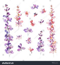 Set of floral design watercolor illustrations. Leaves and branches isolated on white background. Hand drawn flourish elements. For textile, greeting cards, wedding invitation, wrapping and printing