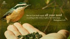 Bible Verse Philippians 4:19 | Philippians 4:19 – God shall Supply Papel de Parede Imagem