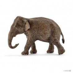 Schleich Wild Life - Asian elephant, female