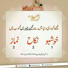 Duaa Islam, Islam Hadith, Allah Islam, Islam Muslim, Islam Quran, Alhamdulillah, Islam Religion, Prophet Muhammad Quotes, Hadith Quotes