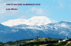 https://flic.kr/s/aHskvtCm5W   147 Crete Nature Almanack - Late Winter   A Print Out and Keep special this week with the first of an 8 part #CreteNature Almanack bit.ly/2nvHKjE