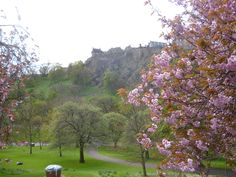Edinburgh Castle and cherry blossom in Princes Street Gardens - Edinburgh in the spring time. Stay nearby at Craigwell Cottage - a self-catering property in the heart of Edinburgh. Within easy walking distance of Princes Street. More at: http://www.2edinburgh.co.uk