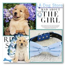LA Dog Store by ladogstores on Polyvore featuring polyvore, fashion, style, M&S, Kershaw and clothing