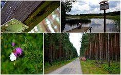 Pętla Bobrowicka, geocaching