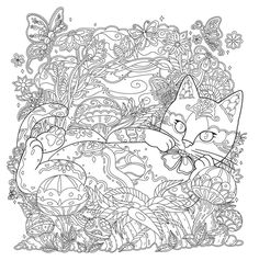 catsample_3.jpg (573×578)