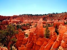 #Red #Yellow #Orange #Rock #Hoodoos in #Bryce #Canyon #NPS - more on www.travel-photographs.net