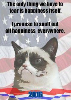 Grumpy Cat for President!!