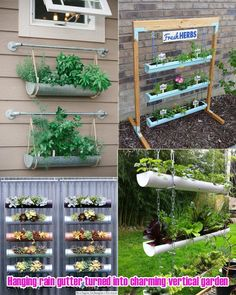 Hanging rain gutter turned into charming vertical garden – DIY Garten Box Jardin Vertical Diy, Vertical Garden Diy, Vertical Gardens, Herb Garden, Garden Paths, Vegetable Garden, Small Flower Gardens, Small Space Gardening, Gardening Tips