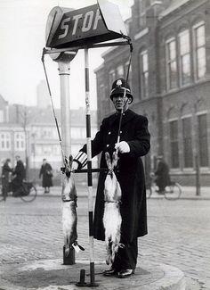 Verkeersagent bij STOP-bord met twee hazen. Van de Ford-Service kregen de verkeersagenten die regelmatig op de drukste punten het verkeer regelden met kerst een haas aangeboden voor het kerstmaal. Den Haag, 22 december 1939