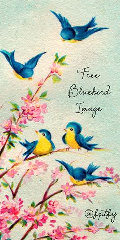 Gorgeous Vintage Bluebird Image! - Free Pretty Things For You