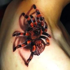 Best Tarantula Tattoo Idea