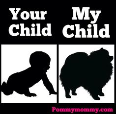 Yes this is truly how I feel! My Pommy is MY child!!! #pomeranian