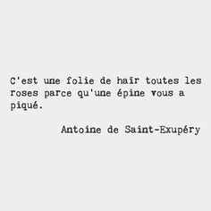 it is madness to hate all roses because you got scratched with one thorn, Antoine de Saint-Exupéry French writer Words Quotes, Wise Words, Me Quotes, Book Quotes, French Words, French Quotes, French Sayings, French Phrases, Italian Quotes