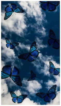 Pastell Wallpaper, Wallpaper Pastel, Blue Butterfly Wallpaper, Butterfly Wallpaper Iphone, Phone Wallpaper Images, Cartoon Wallpaper Iphone, Iphone Wallpaper Tumblr Aesthetic, Cute Patterns Wallpaper, Iphone Background Wallpaper