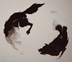 I love this intro to the show Marco Polo! Images are made with water and then drops of ink are added, which spread only to the water image. (Image from the Netflix Marco Polo series. Dessin Old School, Arte Peculiar, Photo D Art, Illustration, Wow Art, Dark Art, Fantasy Art, Beast, Creatures