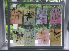 Displaying our nature journal pages for May. Beav, Nature Study, Nature Journal, Gods Creation, Walking In Nature, Journal Pages, Hush Hush, Getting Old, The Past