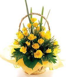 send Yellow Rose Basket to Jaipur. arrangement of 20 fresh yellow roses Order Flowers, Send Flowers, Bunch Of Flowers, Flowers Online, Cheap Flowers, Online Flower Delivery, Same Day Flower Delivery, Online Florist, Exotic Flowers