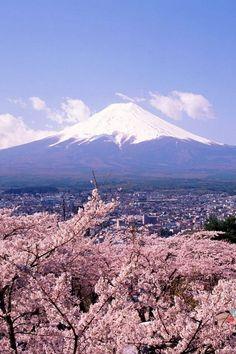 Mt. Fuji, Japan   ふじさんはとてもきれいです。