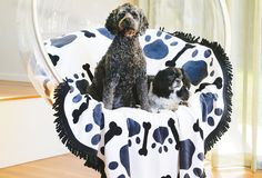 Get Cozy! The Best Dog Beds & More For Snuggling Up This Winter | Modern Dog magazine