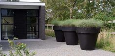 Prachtig die grote zwarte potten met grassen erin!