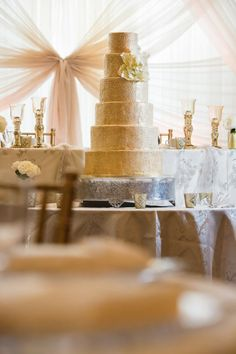 Specializing in contemporary wedding photography. Wedding Details, Wedding Cakes, Wedding Photography, Contemporary, Wedding Gown Cakes, Wedding Cake, Wedding Photos, Wedding Pictures, Cake Wedding