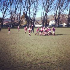 Winter rugby and the sun is shining Rugby, Dolores Park, Sunshine, Spaces, Winter, Travel, Winter Time, Viajes, Sunlight
