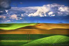 The Fields of the Palouse by Edward Marcinek on 500px