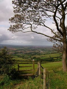 Out across Somerset, Kelston Round Hill, Nr Bath